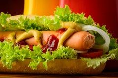 Dettaglio del primo piano del hot dog Immagine Stock