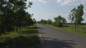 Dettaglio dell'Ungheria Toeroekszentmiklos in via di Szolnoki di periferia Fotografia Stock