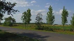 Dettaglio dell'Ungheria Toeroekszentmiklos in via di Szolnoki di periferia Immagini Stock