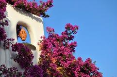 Dettaglio della casa e fiori da Immagini Stock