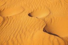 Dettaglio della duna del deserto Fotografia Stock Libera da Diritti
