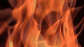Dettaglio della fiamma del fuoco video d archivio