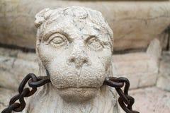 Dettaglio della fontana di Contarini immagini stock libere da diritti