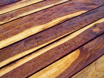 Dettaglio della natura del modello del fondo di bella struttura di legno del tek Immagine Stock