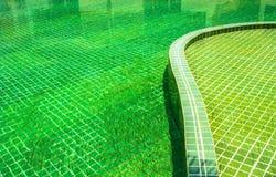 Dettaglio della piscina Fotografie Stock Libere da Diritti
