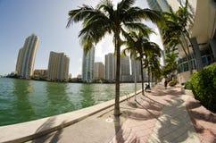 Dettaglio della plaza di Chopin, Miami Immagini Stock Libere da Diritti