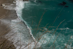 Dettaglio della priorità alta su una scogliera fuori dalla costa di California Fotografia Stock