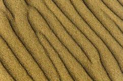 Dettaglio della sabbia Fotografie Stock
