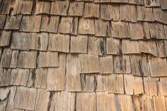 Dettaglio della superficie di legno Immagine Stock