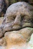 Dettaglio della testa di thestone Immagine Stock Libera da Diritti