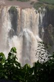 Dettaglio delle cascate di Iguazu fotografia stock libera da diritti