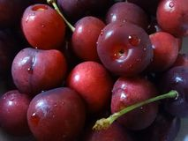 Dettaglio delle ciliege Immagini Stock Libere da Diritti