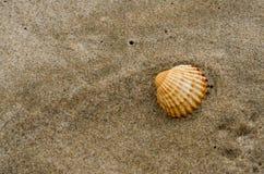 Dettaglio delle coperture sulla sabbia della spiaggia un giorno soleggiato fotografie stock libere da diritti