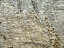 Dettaglio delle rocce di Punakaiki Fotografia Stock Libera da Diritti