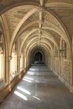 Dettaglio di architettura nell'università di Princeton Fotografie Stock Libere da Diritti