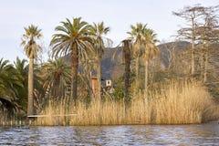 dettaglio di bella villa nel lago di massaciuccoli Fotografia Stock Libera da Diritti