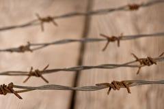 Dettaglio di filo spinato arrugginito Fotografia Stock Libera da Diritti