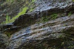 Dettaglio di gocciolamento delle scogliere della cascata fotografie stock libere da diritti