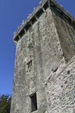 Dettaglio di grande torre al castello ed ai motivi di lusinga Fotografie Stock Libere da Diritti