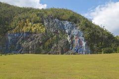 Dettaglio di Mural de la Prehistoria incaricato da Che Guevara a Valle de Vinales, in Cuba centrale immagine stock libera da diritti