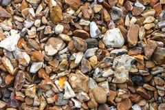 Dettaglio di Pebble Beach Fotografie Stock