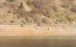 Dettaglio di secchezza del lago della montagna fotografie stock libere da diritti