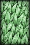 Dettaglio di struttura di lerciume di Kelly Green Palm Fiber Place Mat Coarse Plaiting Rustic Vignetted fotografia stock