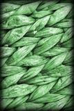 Dettaglio di struttura di lerciume di Kelly Green Palm Fiber Place Mat Coarse Plaiting Rustic Vignetted fotografie stock