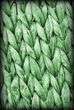 Dettaglio di struttura di lerciume di Kelly Green Palm Fiber Place Mat Coarse Plaiting Rustic Vignetted fotografia stock libera da diritti
