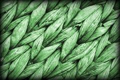Dettaglio di struttura di lerciume di Kelly Green Palm Fiber Place Mat Coarse Plaiting Rustic Vignetted immagini stock