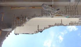 Dettaglio di un tetto crollato su un cantiere di demolizione Immagini Stock