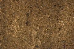Dettaglio di una tela con pittura acrilica e la sabbia Fotografia Stock