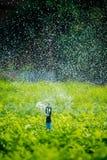 Dettaglio di una testa dell'irrigatore funzionante del prato inglese Fotografie Stock Libere da Diritti