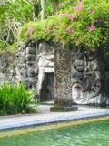 Dettaglio di uno stagno su Bali Immagini Stock Libere da Diritti