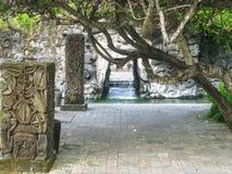 Dettaglio di uno stagno su Bali Fotografie Stock