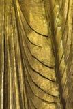 Dettaglio dorato birmano di Buddha Fotografia Stock