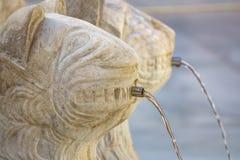 Dettaglio famoso di Lion Fountain in Alhambra Palace, Granada fotografie stock libere da diritti