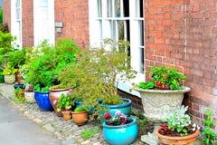 dettaglio grazioso del giardino del cottage Fotografia Stock
