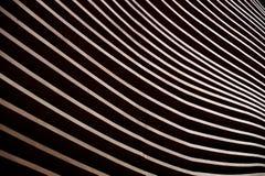 Dettaglio moderno della facciata di architettura che mostra un'incorniciatura di legno della parete fotografie stock