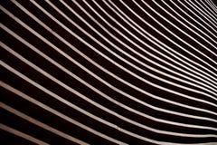 Dettaglio moderno della facciata di architettura che mostra un'incorniciatura di legno della parete immagini stock
