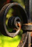 Dettaglio nero del recinto del ferro Fotografia Stock