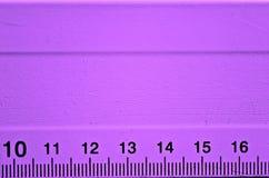 Dettaglio porpora del righello Fotografia Stock