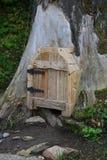 Deur in de boomstam van een boom stock foto
