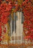 Deur met de herfstbladeren royalty-vrije stock afbeeldingen