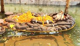 Deus hindu Vishnu Lies em uma posição de reclinação foto de stock royalty free