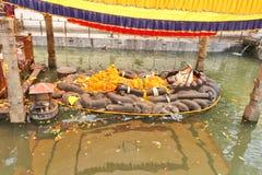 Deus hindu Vishnu Lies em uma posição de reclinação fotos de stock royalty free