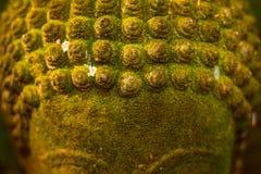 Deusa da Buda da cara do estuque sagrado com musgo verde Imagem de Stock