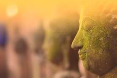 Deusa da Buda da cara do estuque sagrado com musgo verde Foto de Stock