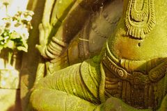 Deusa do estuque sagrado com musgo verde Imagem de Stock
