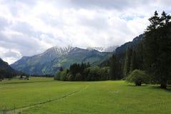 Deutsche Alpen während des Sommers Stockfotos